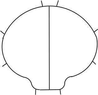 Mushroom shaped spa cover